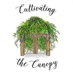 cultivating-the-canopy